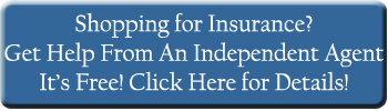 instant life insurance quotes, Health Insurance Quotes button